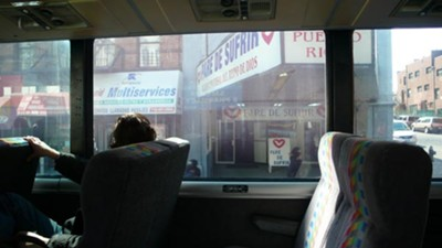 In Rankine's Bus: The Provenance of Beauty